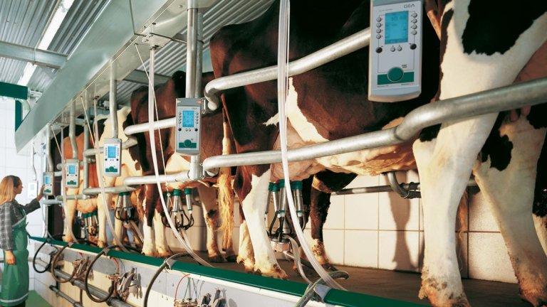 DairyFarming_Euroclass_1_3_1200x675px.jpg