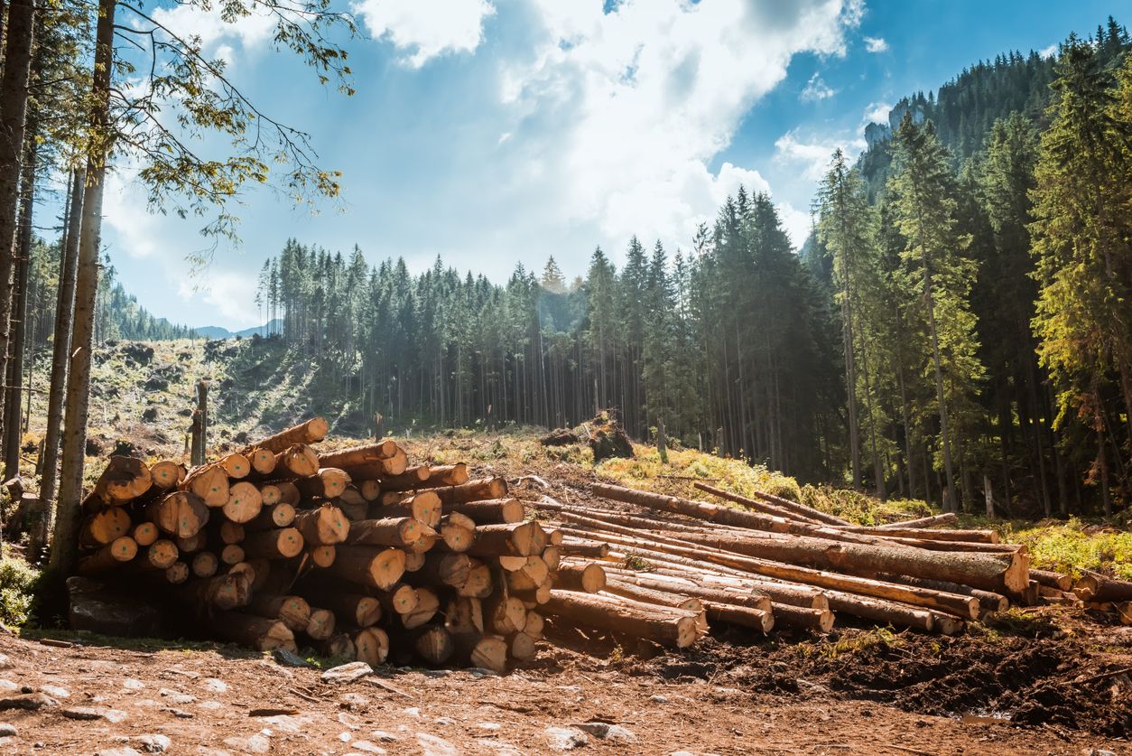 Protecting Natural Resources Through State Law Two