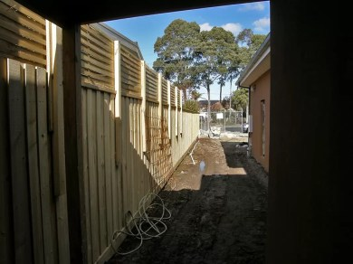 Fence construction with treated pine paling. Lattice trellace for privacy
