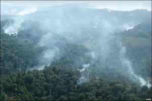 mau-forest_bbc-news