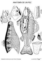 recortables_peces_p