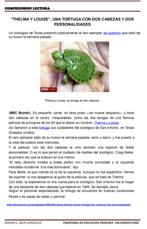 TEXTOS COMPRENSION LECTORA-Tortugas