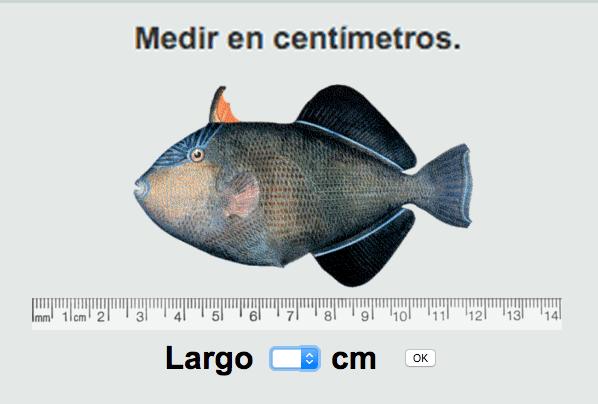 Medir cm