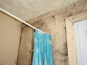 Condensation Dans Votre Maison Signes Dangers Et Traitement