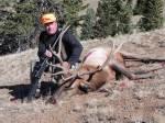 blackpowder bull elk hunting