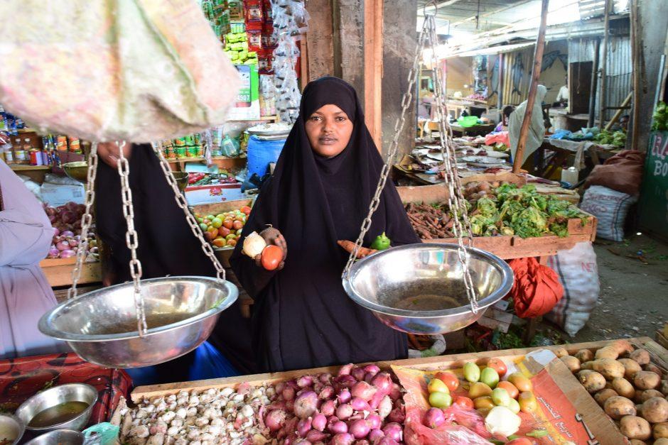 AAH Somalia business grant