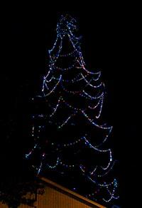 Tree Lighting 2012