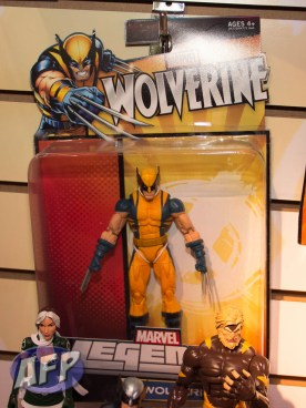 Hasbro Wolverine Legends (11 of 16)