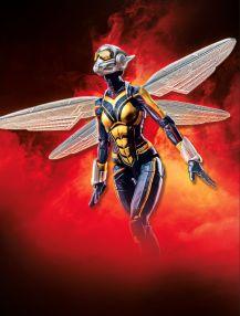 AVN 6 Inch Legends W2 - Wasp