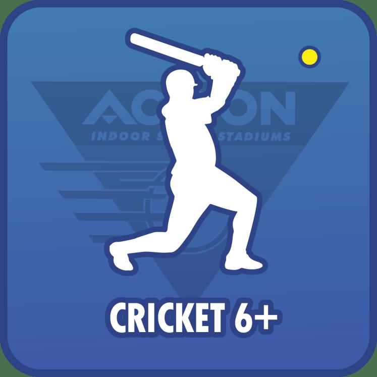 cricket-6