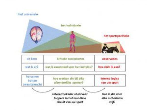 hoofdlijnen_van_de_actiontype_benadering
