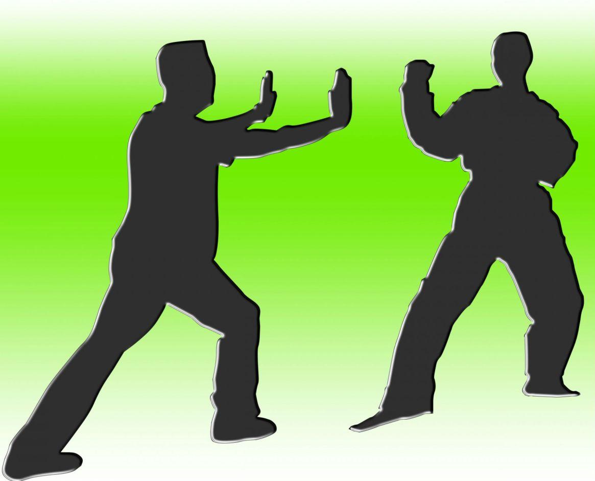 vechtsport1