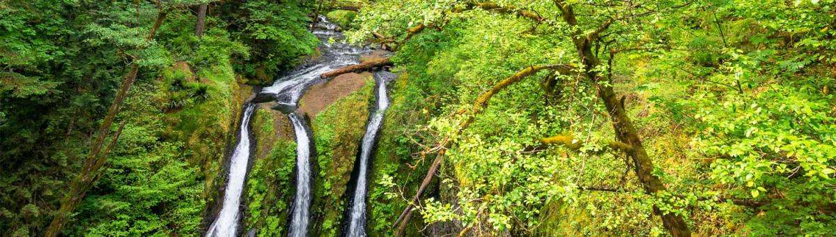 spring waterfall hikes