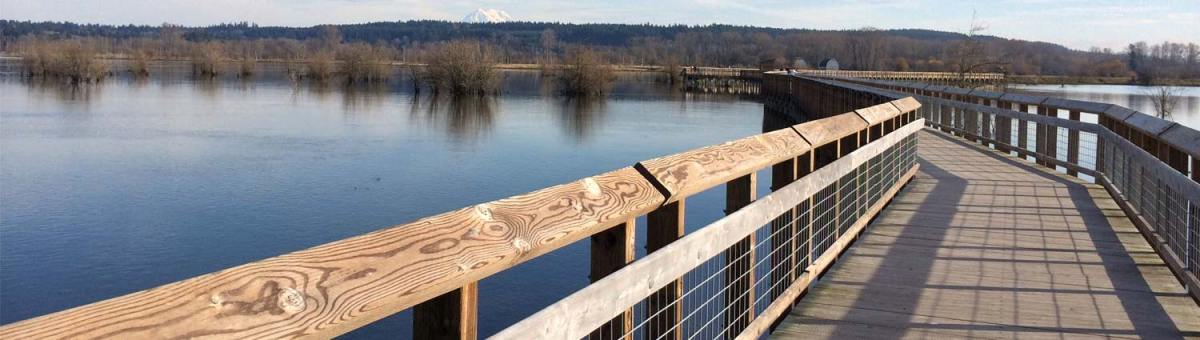 day trip to the nisqually national wildlife refuge