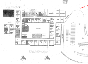 Graphic of the School