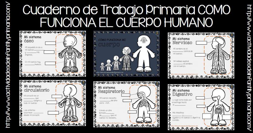 Cuaderno de Trabajo Primaria COMO FUNCIONA EL CUERPO ...