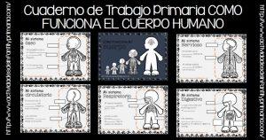 Cuaderno de Trabajo Primaria COMO FUNCIONA EL CUERPO HUMANO