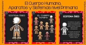 El Cuerpo Humano; Aparatos y Sistemas nivel Primaria