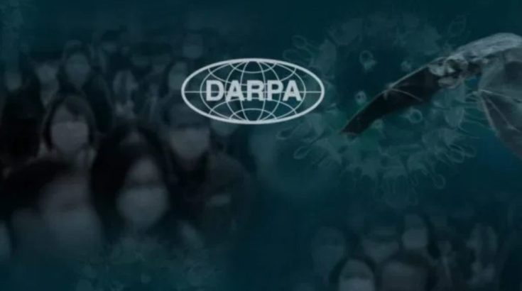 Bats, Gene Editing and Bioweapons: Recent DARPA Experiments Raise Concerns Amid Coronavirus Outbreak - Activist Post