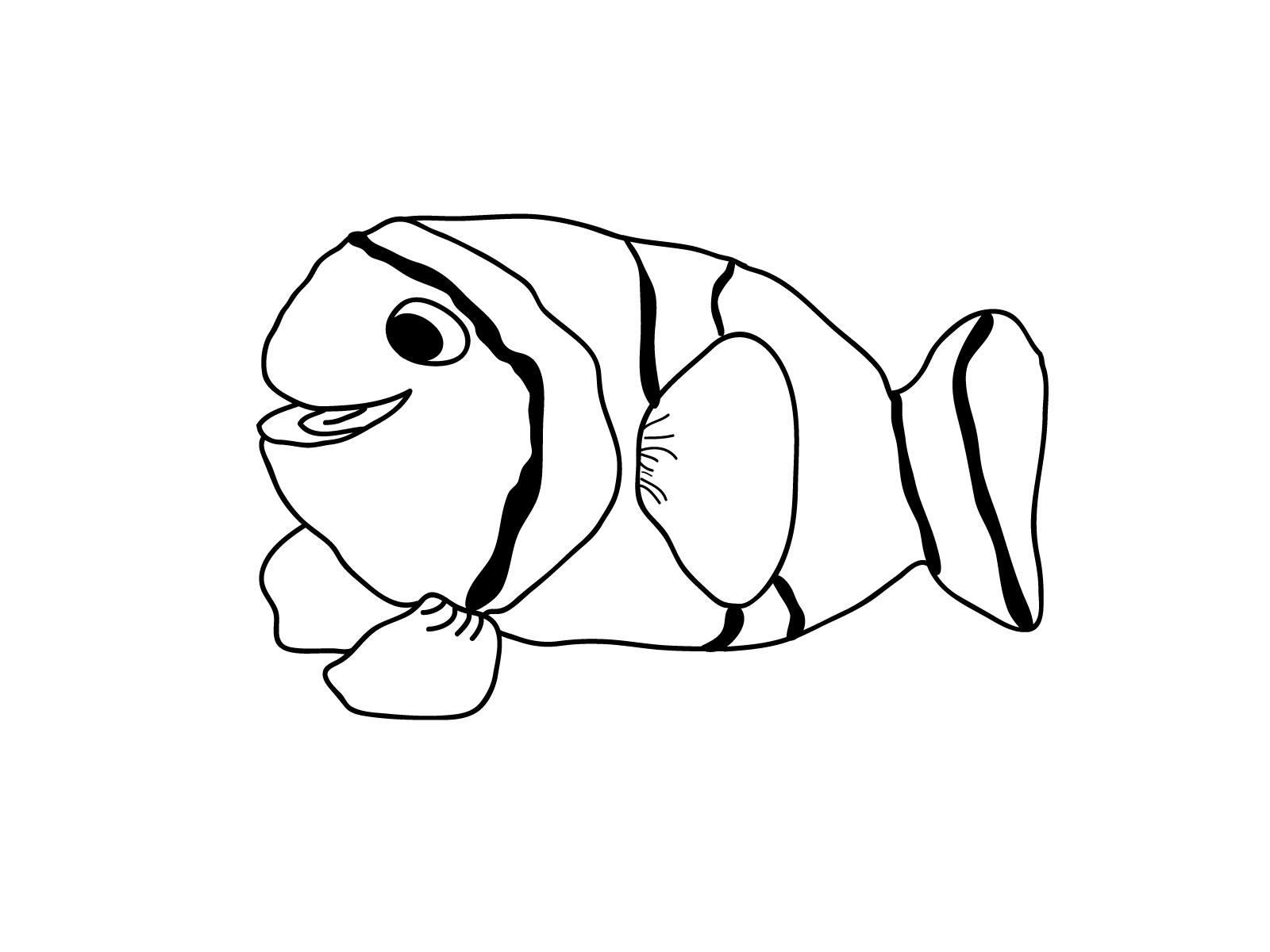 Fish Coloring Page Printable