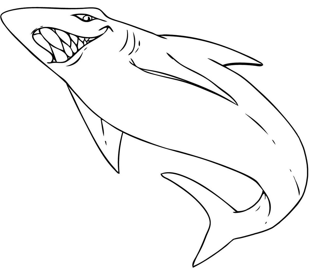 Shark Sheets For Kids