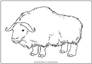 Ox Printables