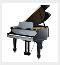 Piano Movers in Naples, Fort myers, Florida