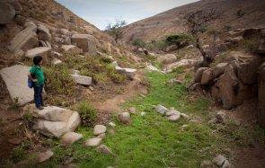 En el 2011, los comuneros de Atiquipa decidieron proteger sus lomas, dado que son la principal fuente de agua para la población y sus cultivos, en especial los campos de olivos. Cerca de 20 mil hectáreas del territorio de la comunidad fueron reconocidas como ACP por el Ministerio del Ambiente. Mira el video de la ceremonia de reconocimiento