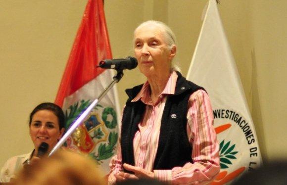 Jane Goodall_spda_Iquitos