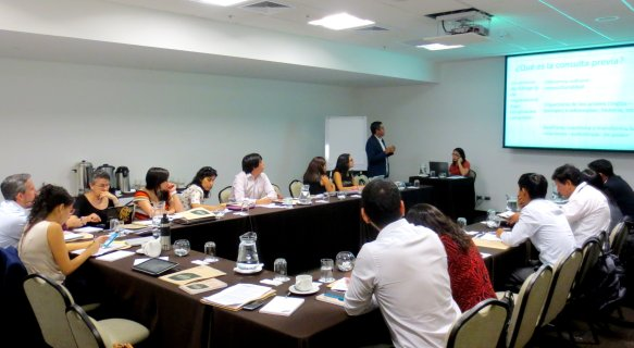 consulta previa_taller_politicas_spda