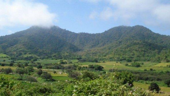 Cerros de Amotape_Inforegión