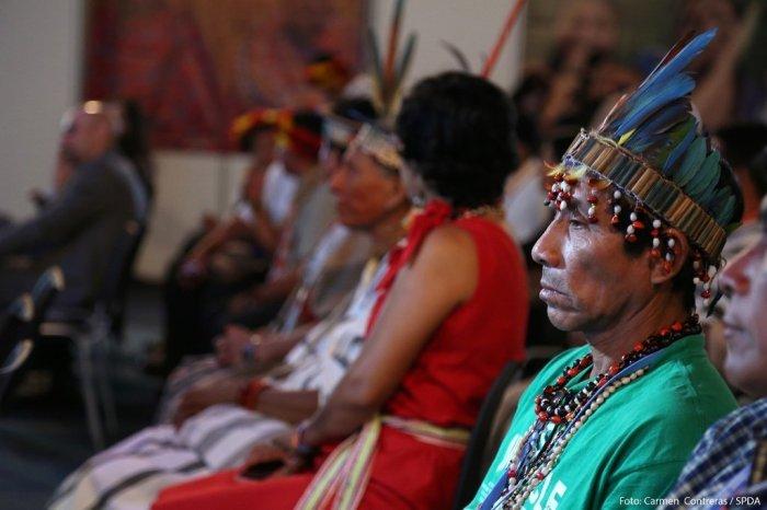 indigenas-spda