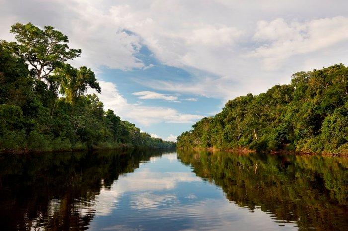Actualidad_ambiental_Pacaya samiria 4