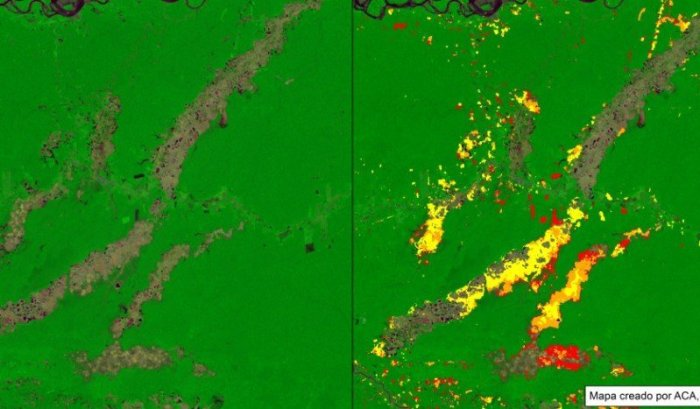deforestacion mineria madre de dios