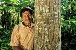 investigación forestal - CIFOR