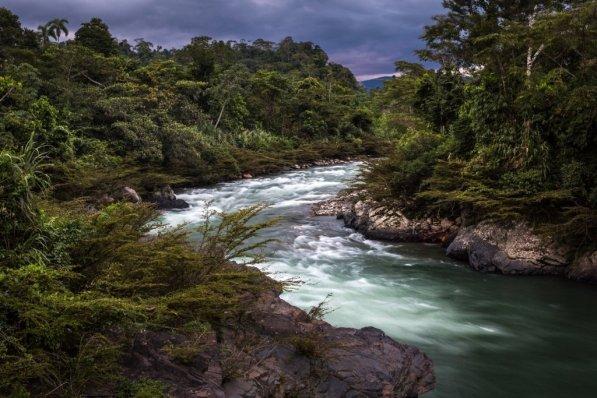 1. Río Tono. Pilcopata Cusco. Antes de existir, el río Alto Madre de Dios se nutre de cientos de ríos y quebradas que nacen de los bosques en las alturas de Cusco y Puno, el Río Tono es uno de ellos y sus aguas son heladas y cristalinas, muy distinto al Madre de Dios.