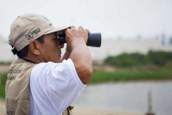 Carlos Bramon, quién ha dedicado su vida a la observación y cuidado de aves, es uno de los guías del Refugio de Vida Silvestre los Pantanos de Villa, es capaz de reconocer más de 20 especies de aves por el sonido que hacen. (Foto: Katherine Bless)