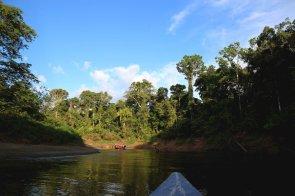 El lugar destaca por sus hermosos paisajes a toda hora del día. Sus bosques, ríos y el clima amazónico hacen de Pacaya Samiria un lugar solicitado por los turistas.