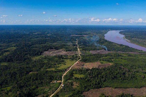 11. El principal problema con esta carretera es que habría sido construida sin los permisos ambientales necesarios.