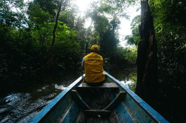 La ACR Comunal Tamshiyacu Tahuayo tiene una extensión de 420 080.25 hectáreas, y está ubicada entre los distritos Napo, Mazán y las Amazonas, en la provincia de Maynas, Pebas en Mariscal Ramón Castilla, y Putumayo en la provincia del mismo nombre. Foto: SPDA/Spectabilis