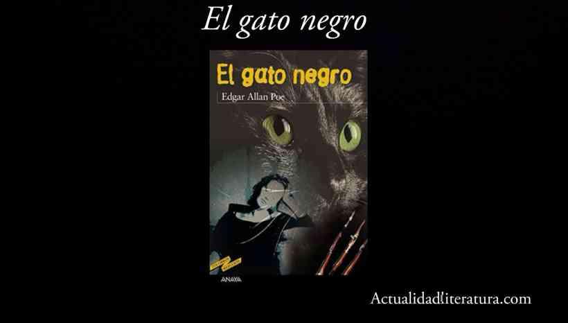 El gato negro.