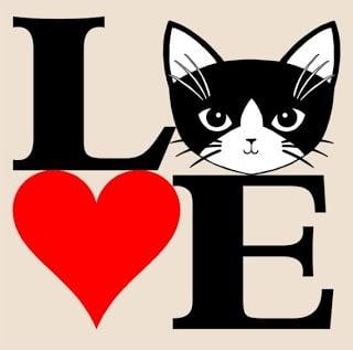 30 razones para amar a los gatos
