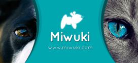 Miwuki: la mejor app para adoptar animales