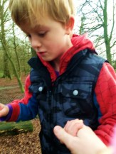 Adventure at Aldenham Country Park