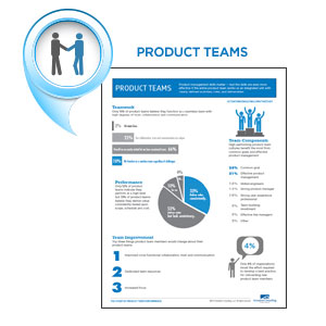 product management infographics-productteams