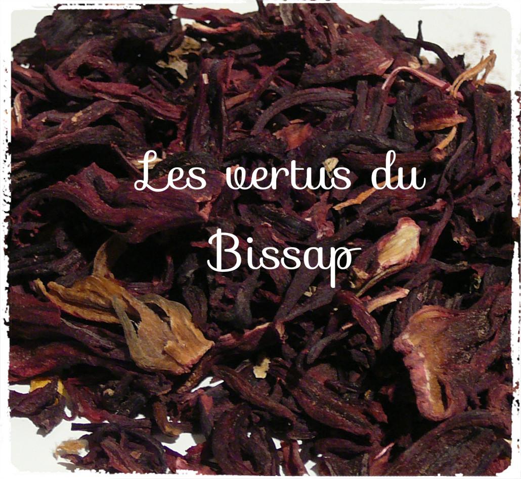 You are currently viewing Connaissez vous le bissap et ses vertus?