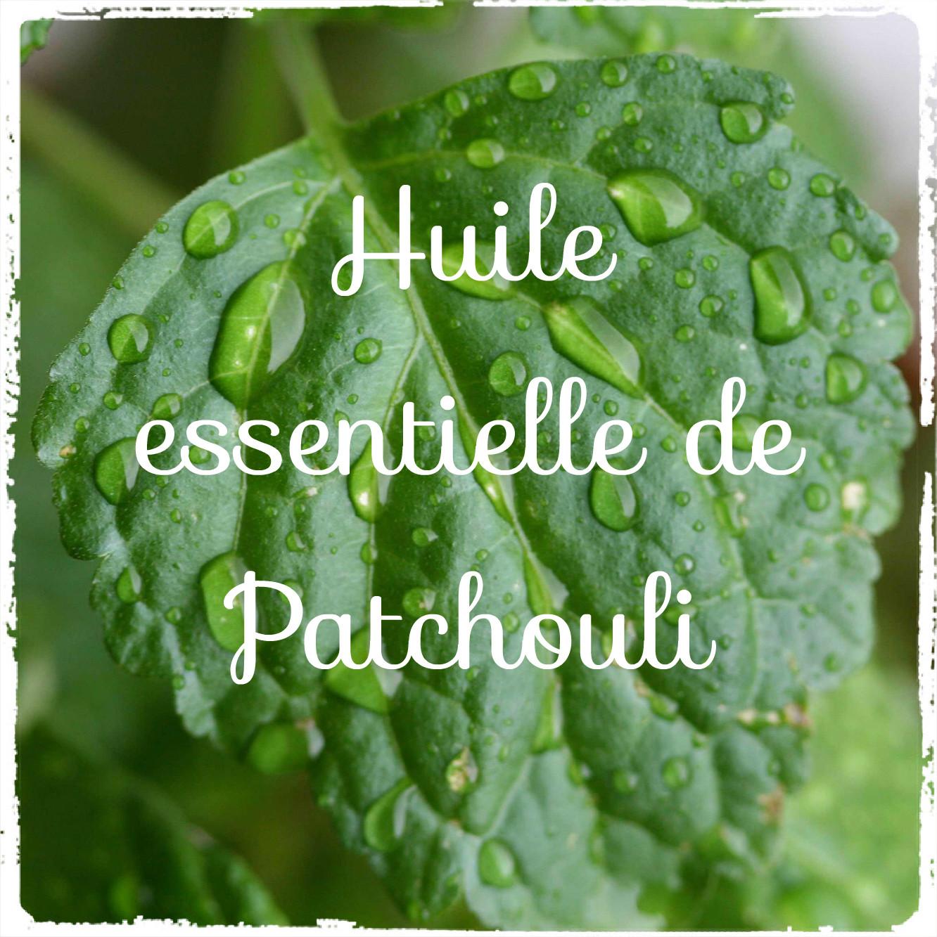 20 astuces d'utilisation de l'huile essentielle de Patchouli