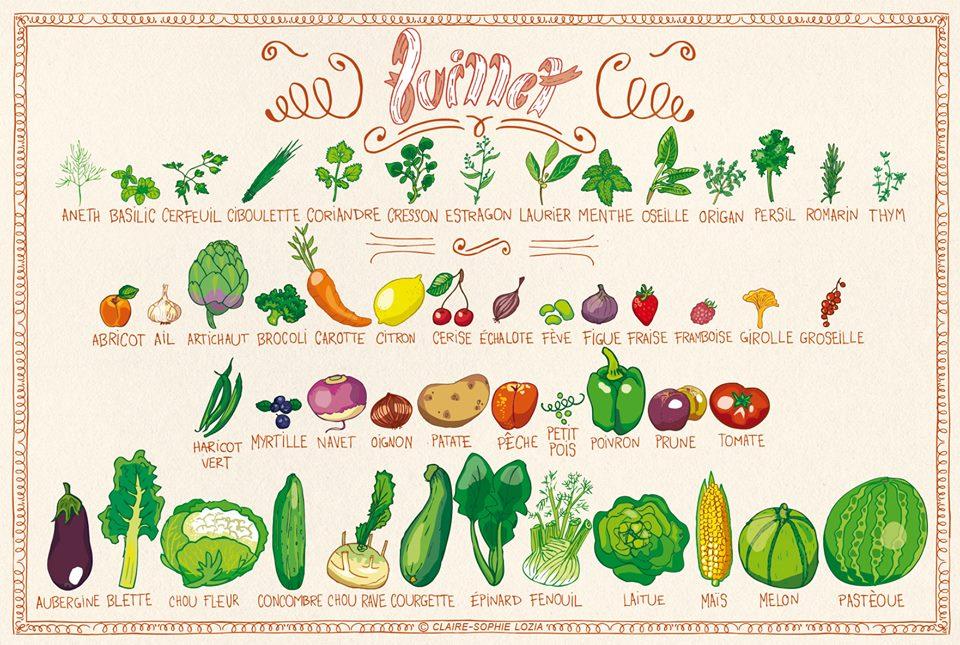 You are currently viewing Retrouvez les fruits et légumes de juillet
