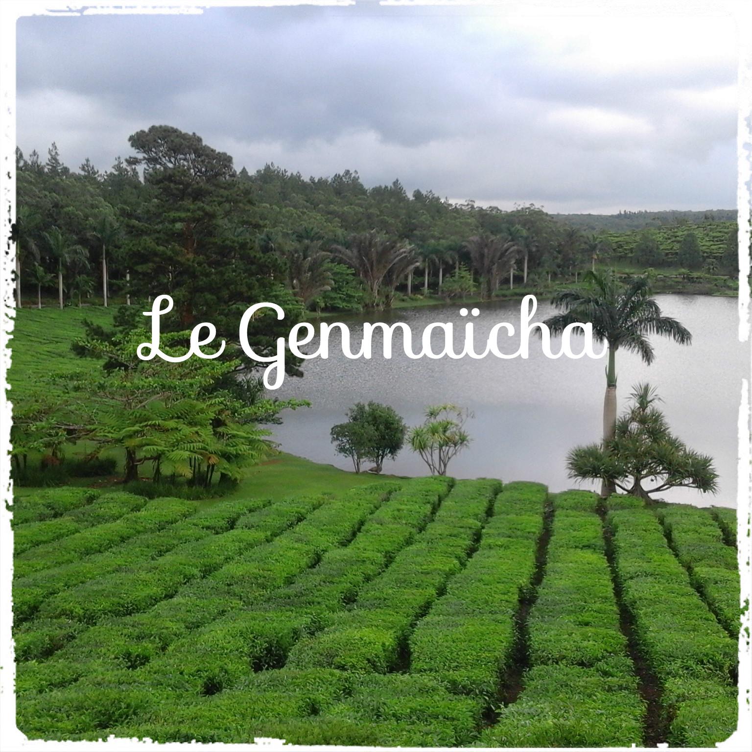 You are currently viewing Le meilleur thé vert au monde : le Genmaïcha