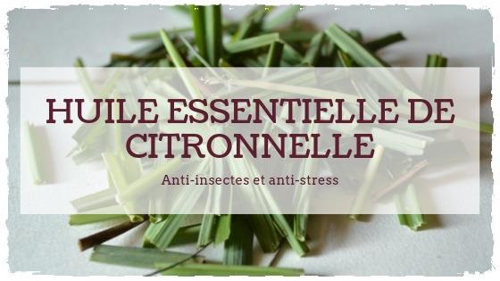 You are currently viewing Huile essentielle de base: la Citronnelle